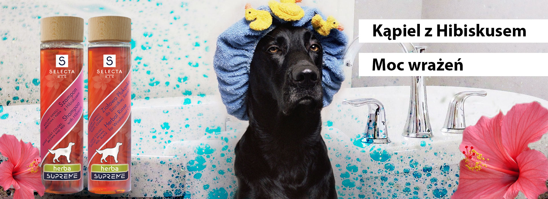 szampon dla zwierząt z hibiskusem