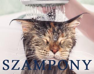 Szampony